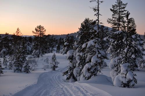 Vintertur til Sørmyrseter