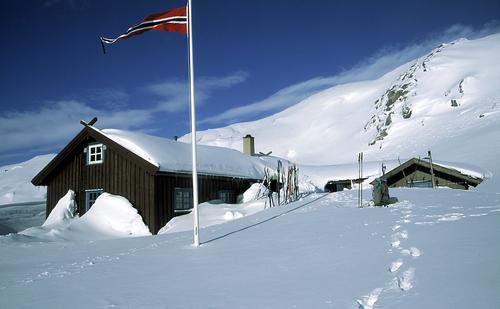 DNT Sør og villreinen i Setesdalsheiene får tidenes julegave!