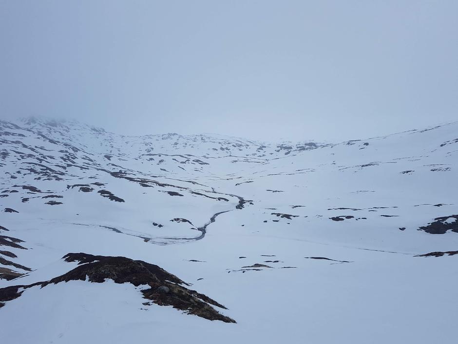 Fra Kvitingen mot Gullhorgabu 04. mars 2021