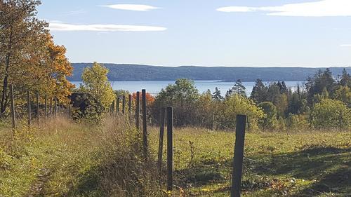 Fra Gisle mot Oslofjorden