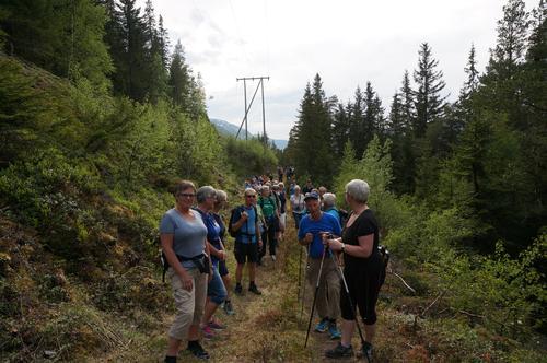 Den gamle ferdselsveien mellom Vågå og Lom