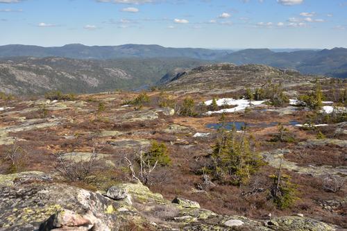 Utsikt mot Moshei og Tørdal