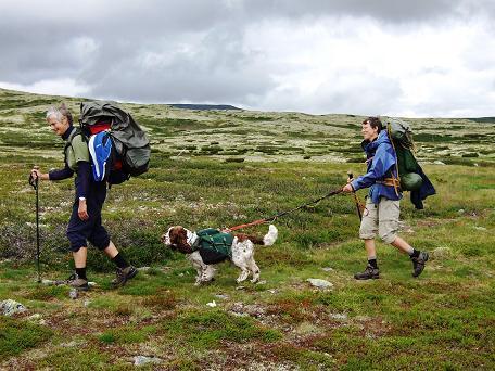 Kompani MaGreSa i fint driv over Ringebufjellet