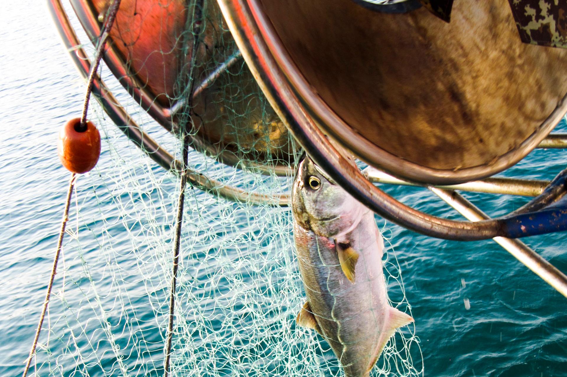 Fishing in tuscany