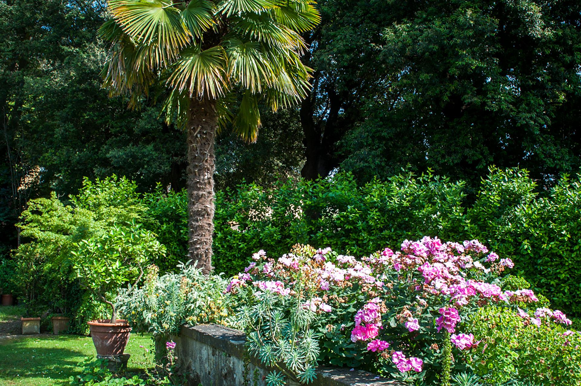 Secret florence garden