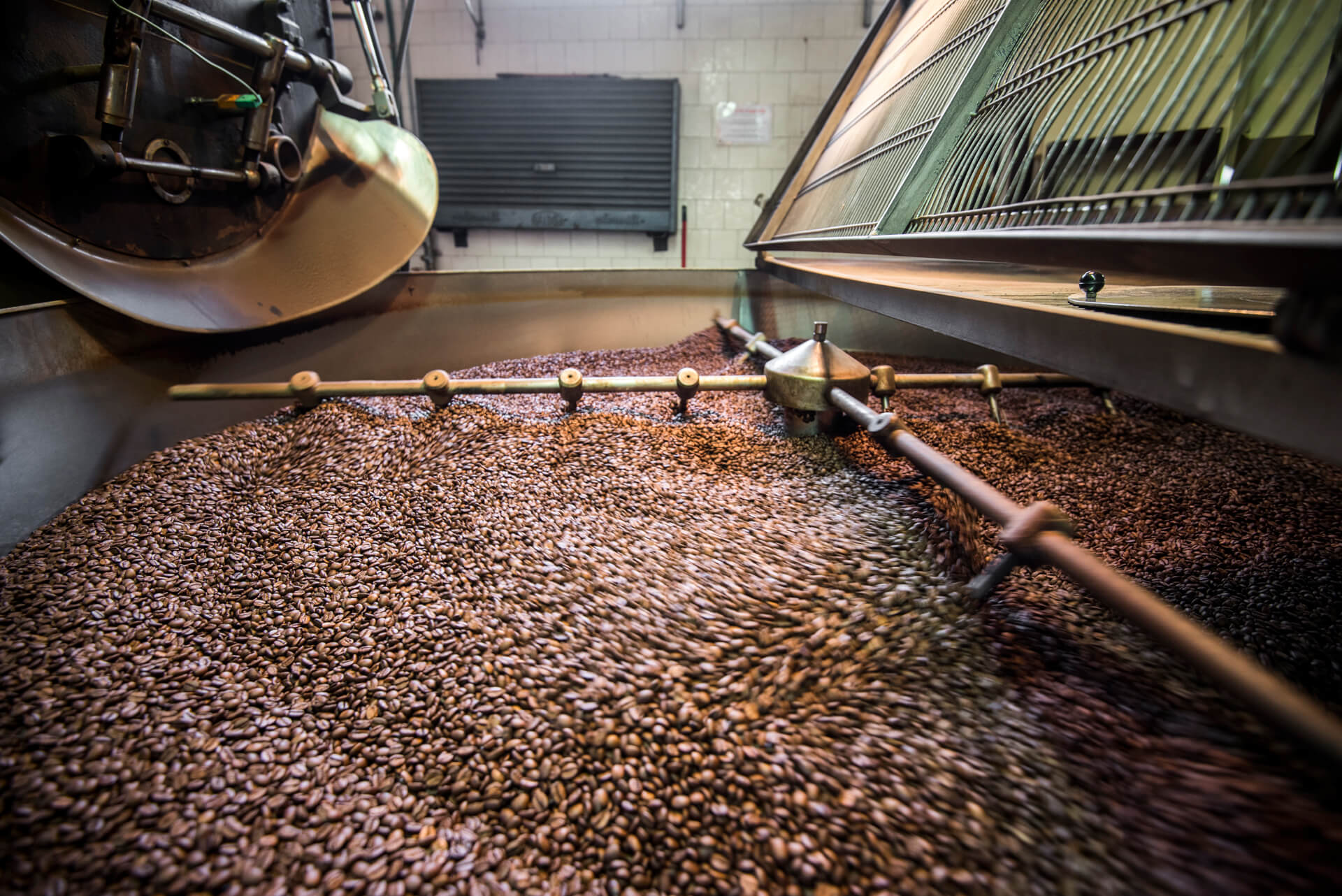 Coffee roasting factory