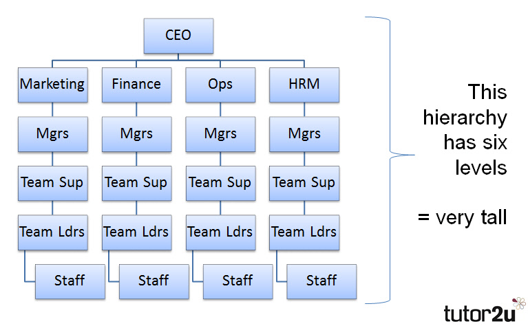 Hierarchy tutor2u business further below is another organisation chart which shows a taller hierarchy altavistaventures Gallery