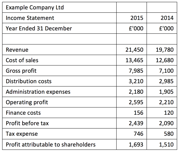 Income Statement Introduction – Profit and Loss Statement Example
