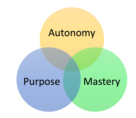 motivation pink three elements?mtime=20160216201759 motivation pink (three elements of intrinsic tutor2u business