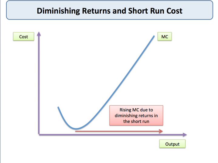 diminishing returns Despite the general prevalence of diminishing returns, some industries behave differently in particular, the software industry seems to work under a principle of increasing returns where getting bigger results in better deals than if you stay small.