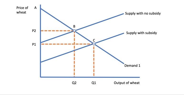 farm subsidies revision essay plan  economics  tutoru evaluation of point