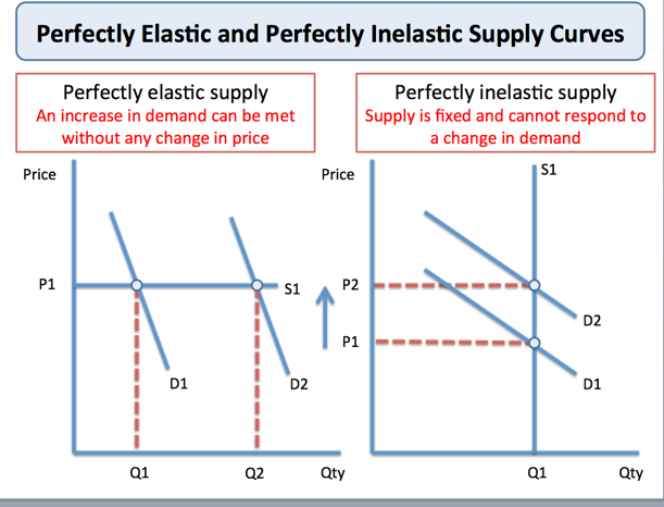 economics price elasticity of demand essay