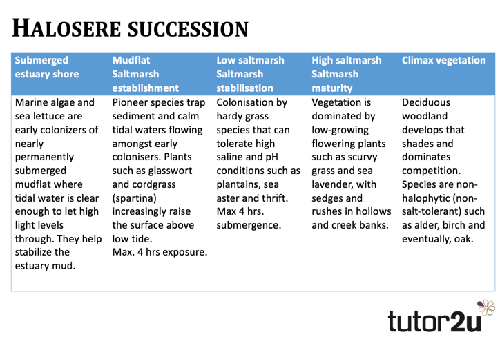 an analysis of an ecosystem succession paper Find this pin and more on 7th - impacting earth systems by how a pond ecosystem changes, showing succession and analysis questions on primary succession.