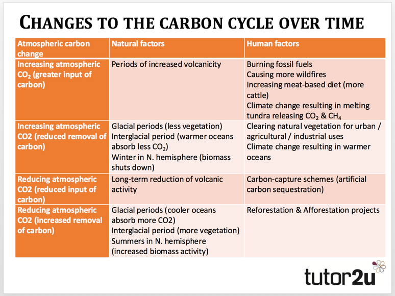 Changes To The Carbon Cycle Over Time Tutor2u Geography
