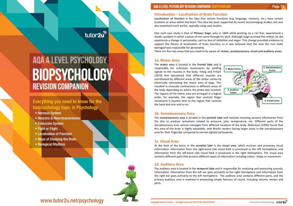 biopsychology revision A2 revision session year two exam help exam practice exam practice and revision articles in psychology information booklets.