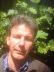 Ralf's profile picture