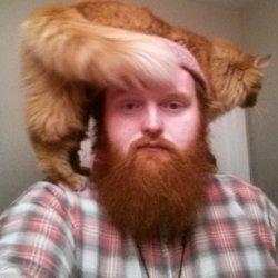 Adam's profile picture