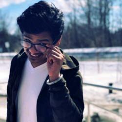 Ansh's profile picture