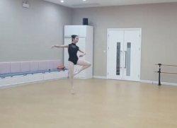 Wenlu's profile picture