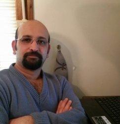 Amir's profile picture