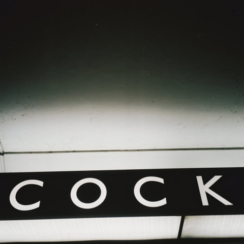 cock