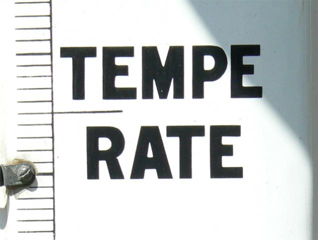 temperate