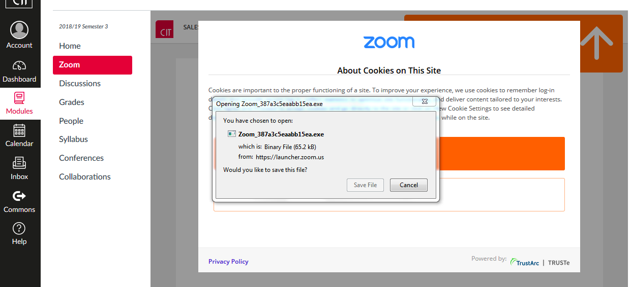 zoom application download