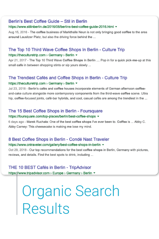 google organic search results page