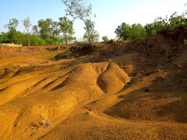 Badland Topography from western Bengal Basin developed over Quaternary lateritic surface