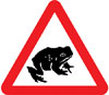 Migratory toad crossing ahead