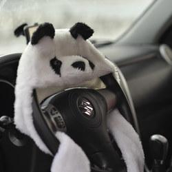 Car panda