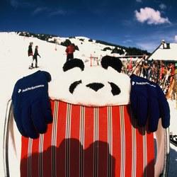 Performance Panda