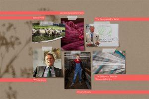 British Wool Textiles