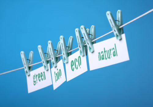 fashion sustainability Eco environment Adobe