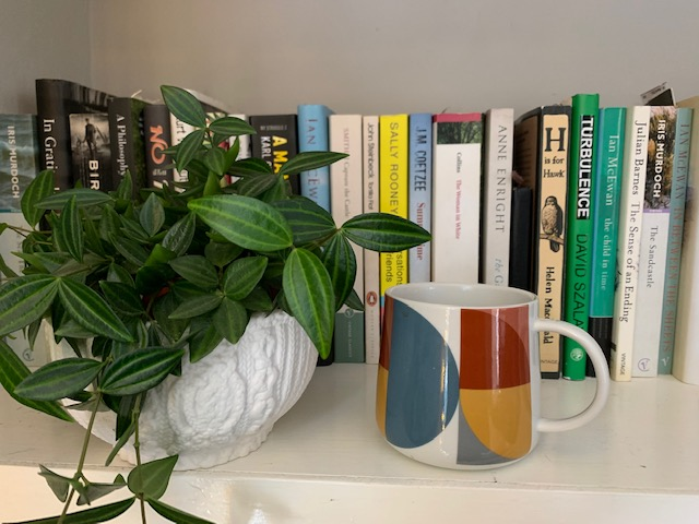 Shelf of paperback books, with potted plant