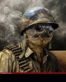 Benutzerbild von 5. ISAF-Kommandeur marcoheinzi