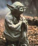 Benutzerbild von 5. Oberbefehlshaber yoda