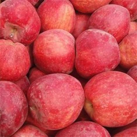 Red Apple, 1 KG pack