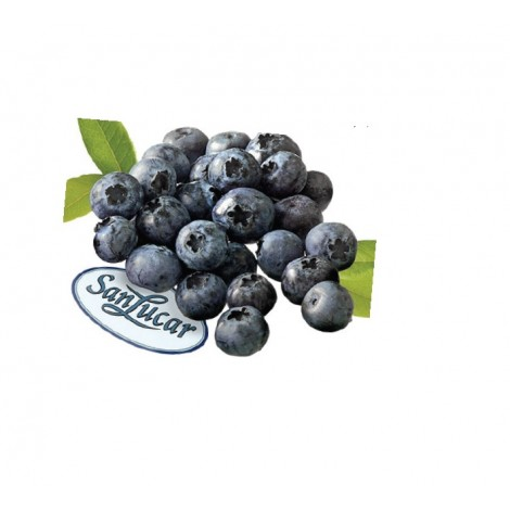 Blueberry Sanlucar Turkey / 125gm Pack