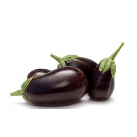 Eggplant Big, Iran, Per Kg