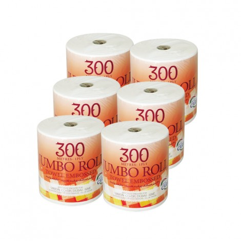 Euro Care Maxi Roll Jumbo White 6x300mtr