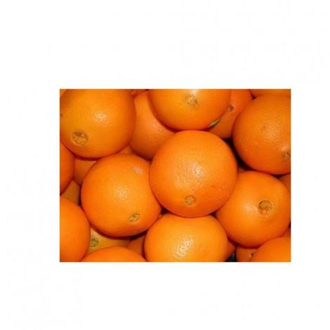 Navel Orange, Egypt, 1 KG