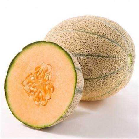 Rock Melon, Iran, Per Kg