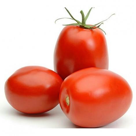 Tomato Plums, Spain, Per Kg