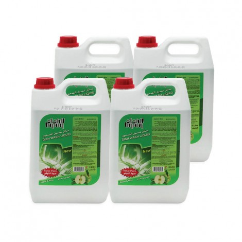 Union Dish Wash Liquid Apple 4x5Ltr