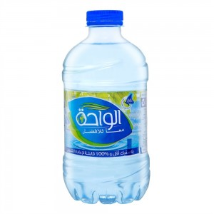 Oasis Come to Life Mineral Water - 330 ml