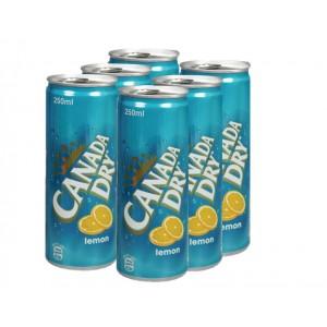 Canada Dry Canada Dry Lemon Can 250Ml