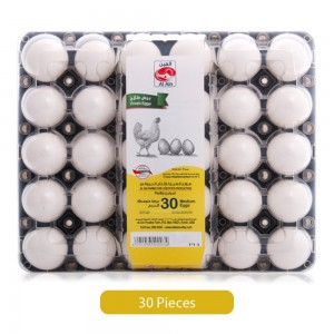 Al Ain Eggs Tray - Medium, 30 Pieces