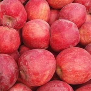 Apple Red, Iran, Per Kg