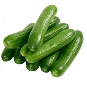 Organic Cucumber , UAE, 1 KG